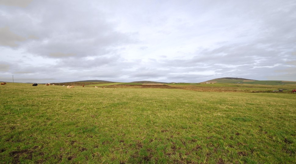 1.43 ha at Calderhead, St. Ola