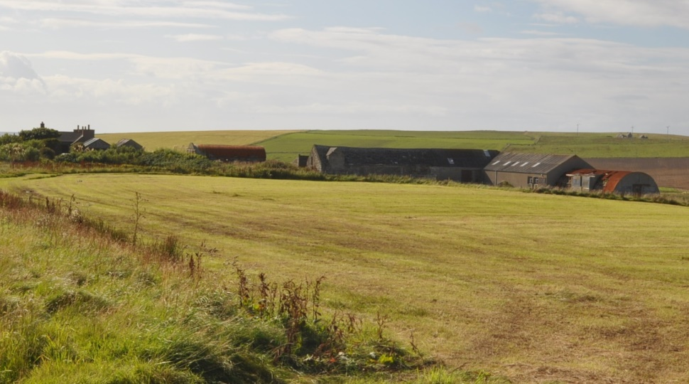 Grahamston, 16 acres or thereby, South Ronaldsay, KW17 2RN