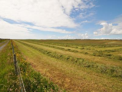 Lands of Isbister, North Liddle and Petersquoy, South Ronaldsay, KW17 2RW
